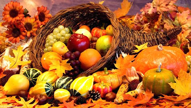 Resultado de imagen de fotos de otoño